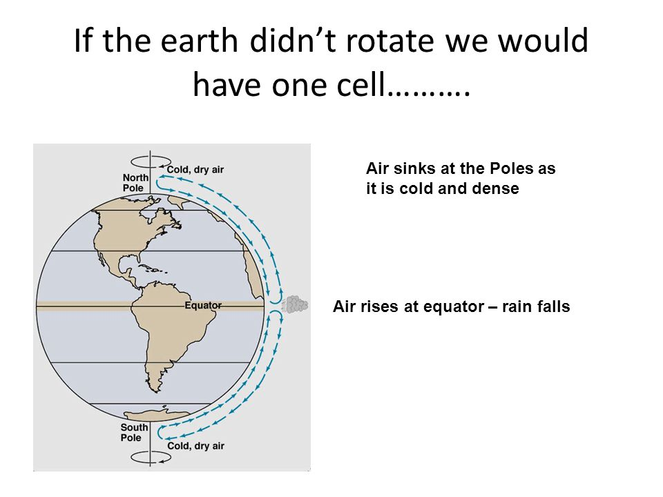 If the earth didn't rotate we would have one cell……….
