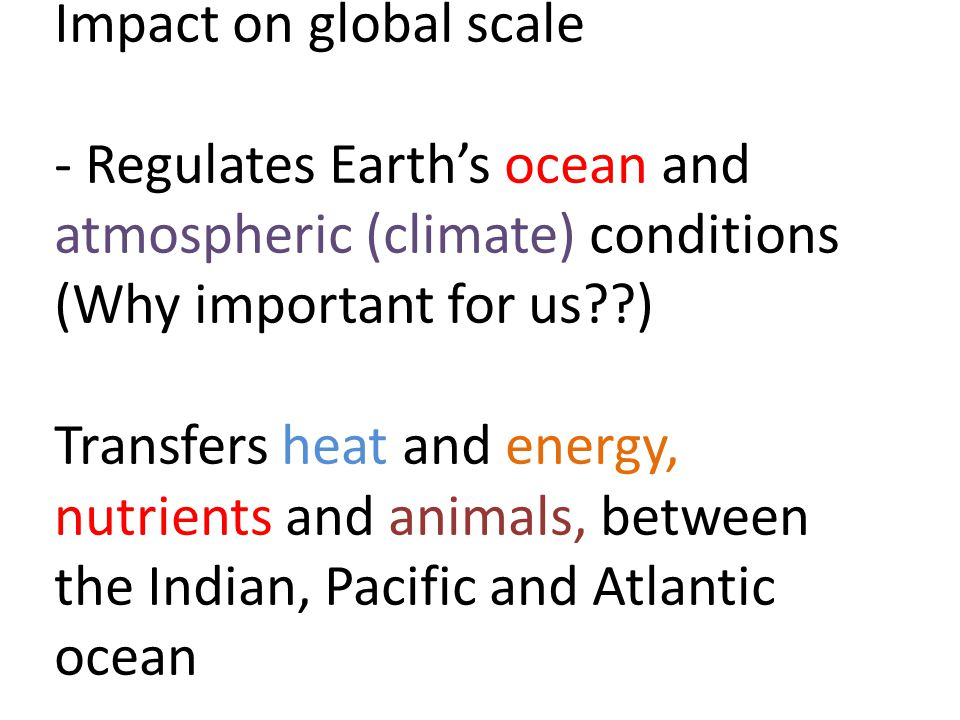 Impact on global scale - Regulates Earth's ocean and atmospheric (climate) conditions (Why important for us ) Transfers heat and energy, nutrients and animals, between the Indian, Pacific and Atlantic ocean