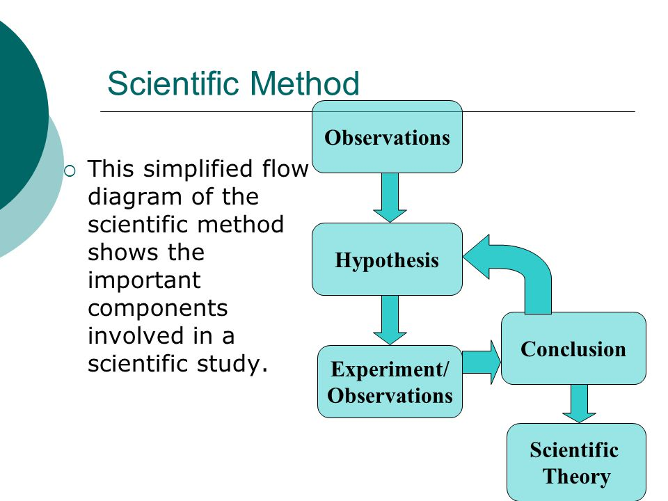 Biology 10 laboratory ms nancy wheat important information scientific method this simplified flow diagram of the scientific method shows the important components involved ccuart Image collections