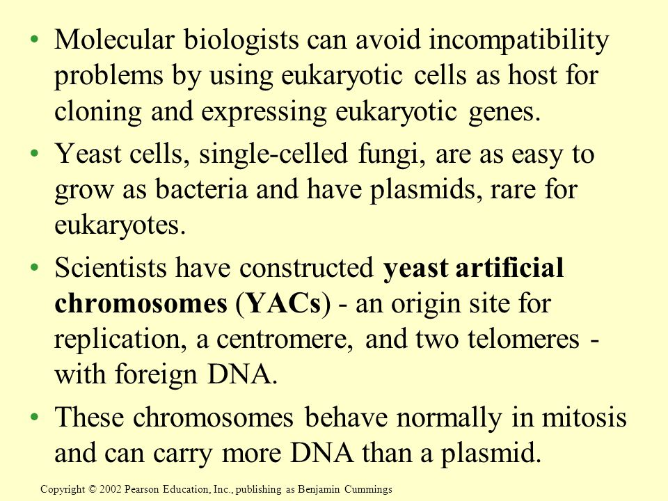 Molecular biologists can avoid incompatibility problems by using eukaryotic cells as host for cloning and expressing eukaryotic genes.