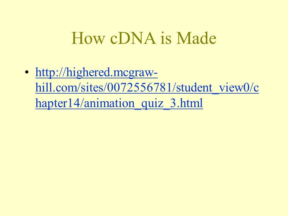 How cDNA is Made   hill.com/sites/ /student_view0/c hapter14/animation_quiz_3.htmlhttp://highered.mcgraw- hill.com/sites/ /student_view0/c hapter14/animation_quiz_3.html