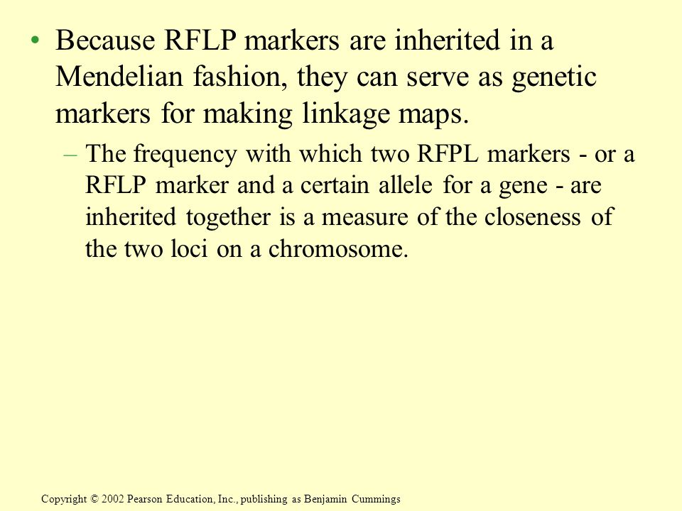 Because RFLP markers are inherited in a Mendelian fashion, they can serve as genetic markers for making linkage maps.