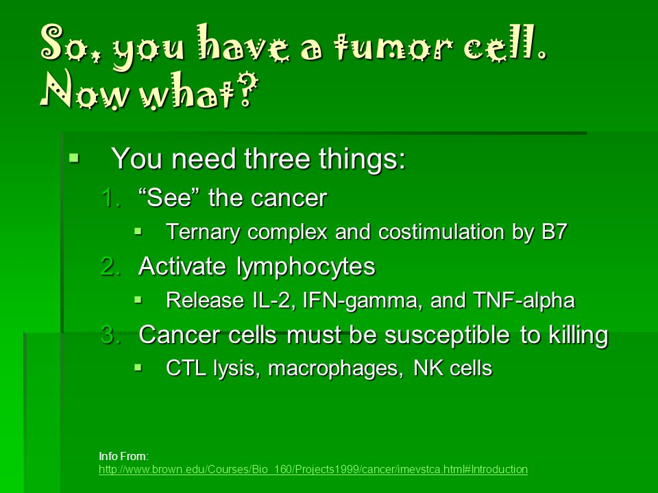 Immune Response to Tumors  Mostly a cell-mediated response  NK Cells  Not MHC restricted  Fc receptor binds to antibody coated tumor cell  ADCC  Chedieak-Higashi syndrome  Macrophages  Not MHC restricted  Elicits ADCC  TNF-alpha  Immune Surveillance Theory