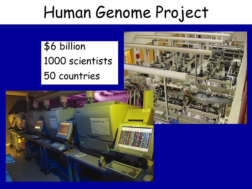 Human Genome Project $6 billion 1000 scientists 50 countries