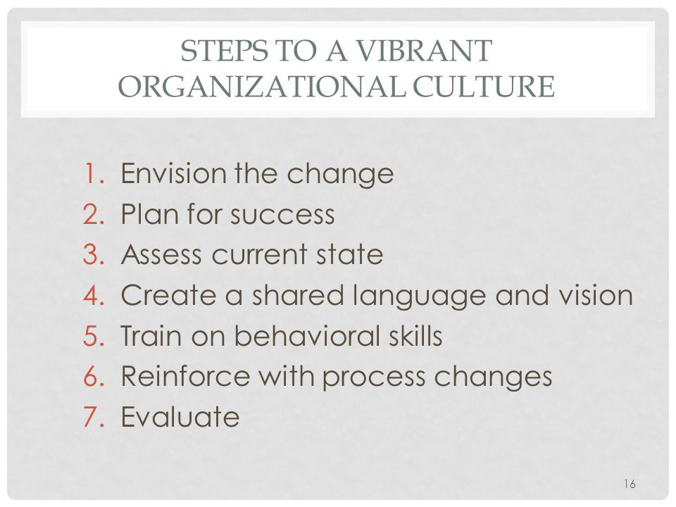 STEPS TO A VIBRANT ORGANIZATIONAL CULTURE 1.Envision the change 2.Plan for success 3.Assess current state 4.Create a shared language and vision 5.Train on behavioral skills 6.Reinforce with process changes 7.Evaluate 16