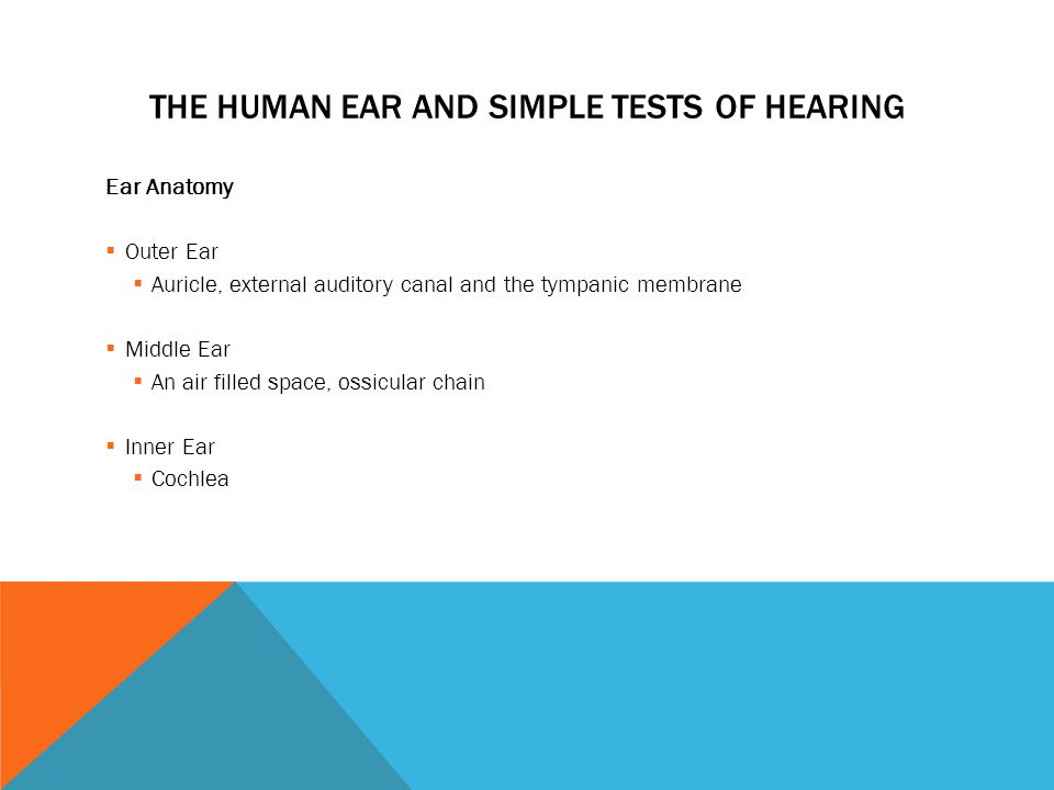 The Human Ear And Simple Tests Of Hearing Ear Anatomy Outer Ear
