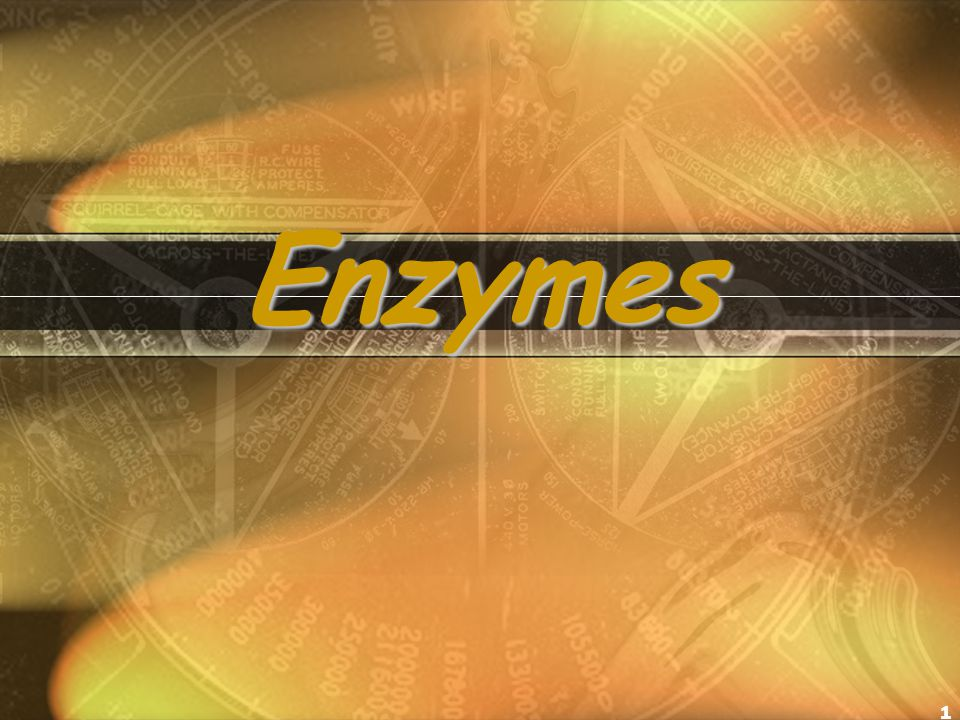 1 Enzymes