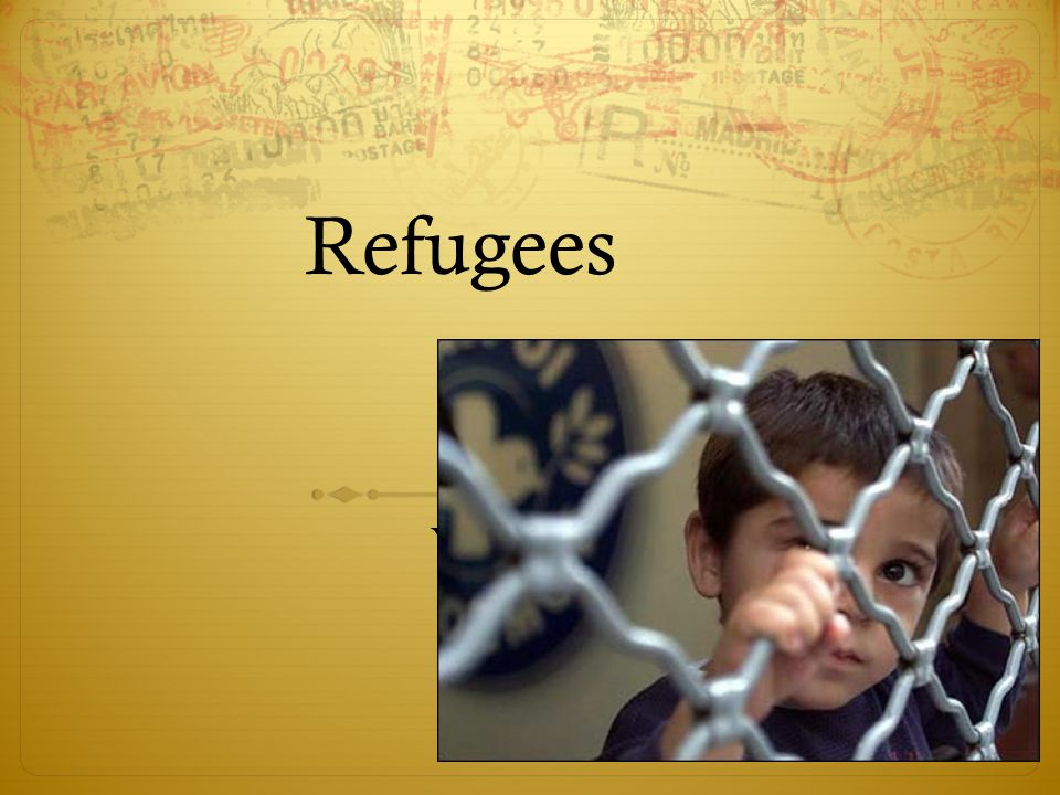Refugees Year 11 Issue