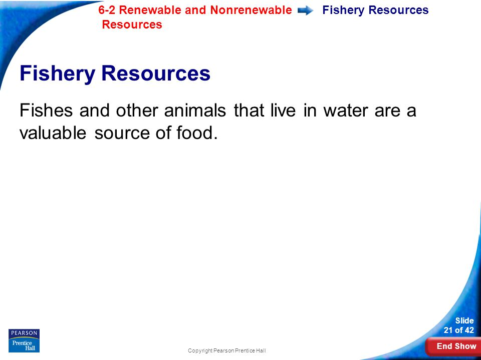 End Show 6-2 Renewable and Nonrenewable Resources Slide 21 of 42 Copyright Pearson Prentice Hall Fishery Resources Fishes and other animals that live in water are a valuable source of food.