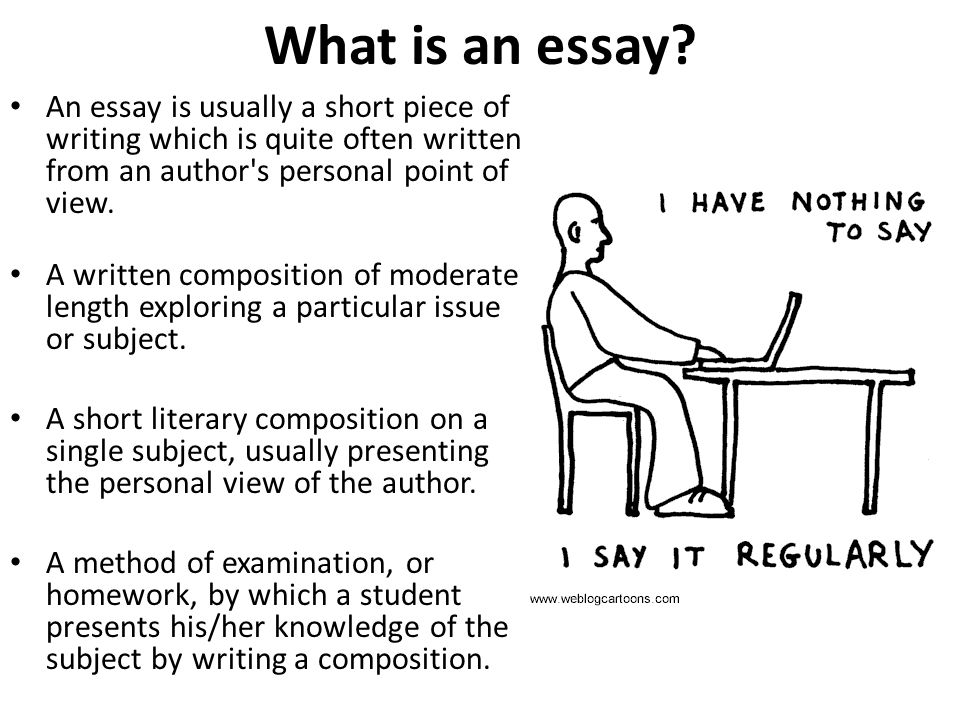 asa level business studies  essay writing mr spicer  ppt download what is an essay