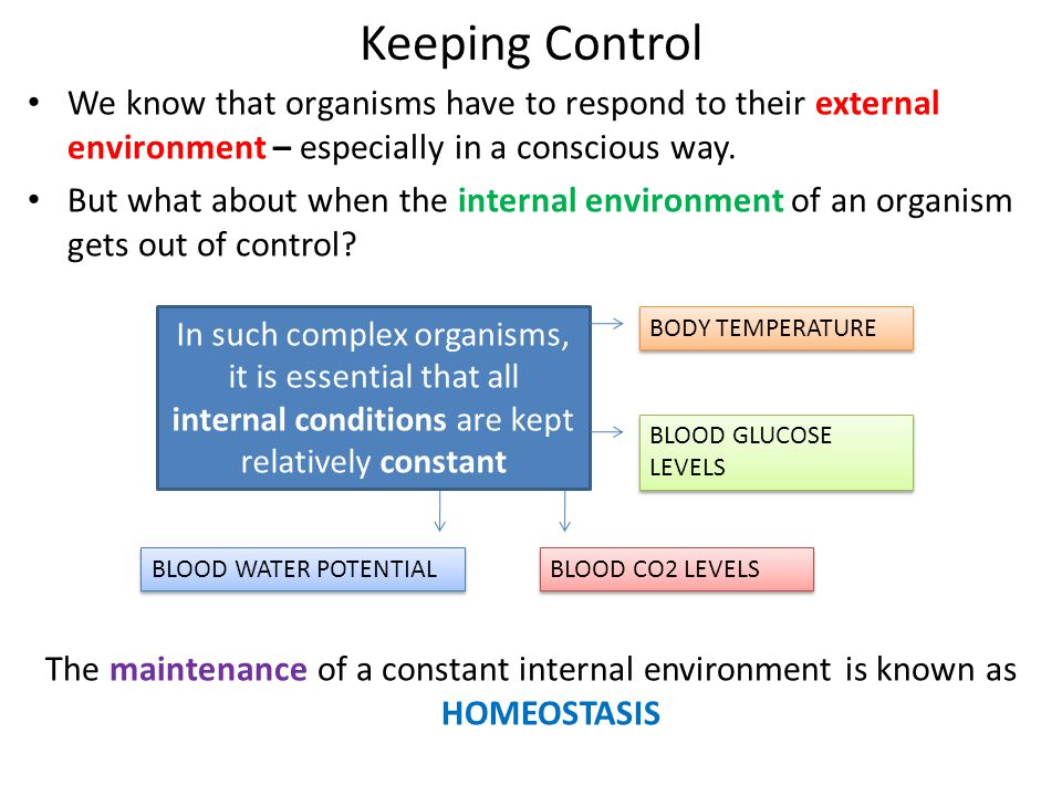 Keeping Control We know that organisms have to respond to their external environment – especially in a conscious way.