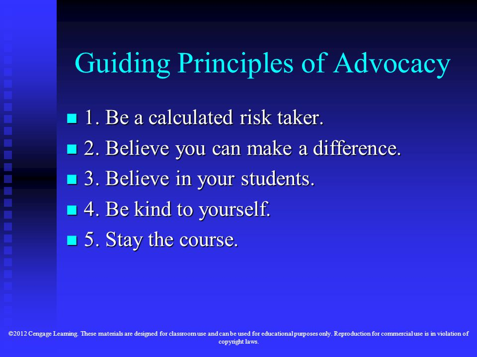 Guiding Principles of Advocacy 1. Be a calculated risk taker.