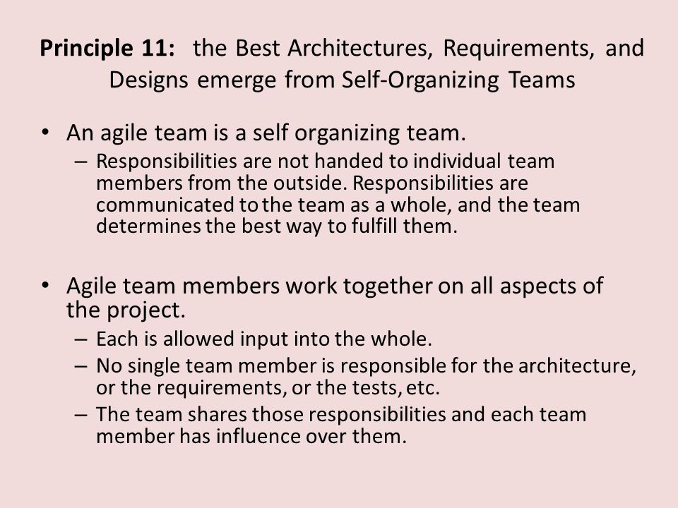 Principle 11: the Best Architectures, Requirements, and Designs emerge from Self-Organizing Teams An agile team is a self organizing team.