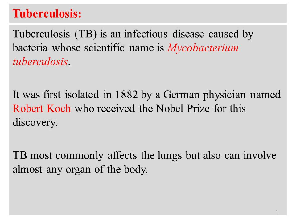 Rculosis Tb Is An Infectious Disease Caused By Bacteria Whose Scientific Name