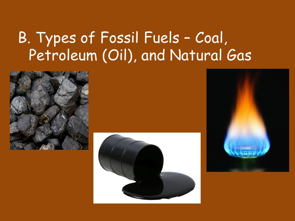 B. Types of Fossil Fuels – Coal, Petroleum (Oil), and Natural Gas