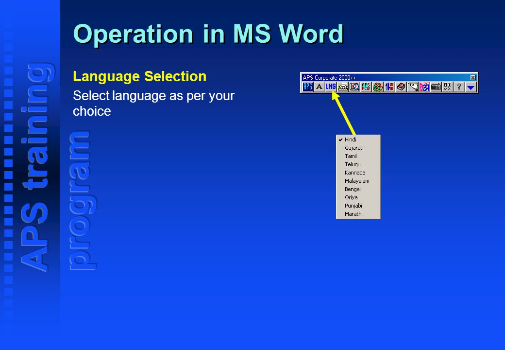 Welcome Training Program of bilingual software APS Corporate