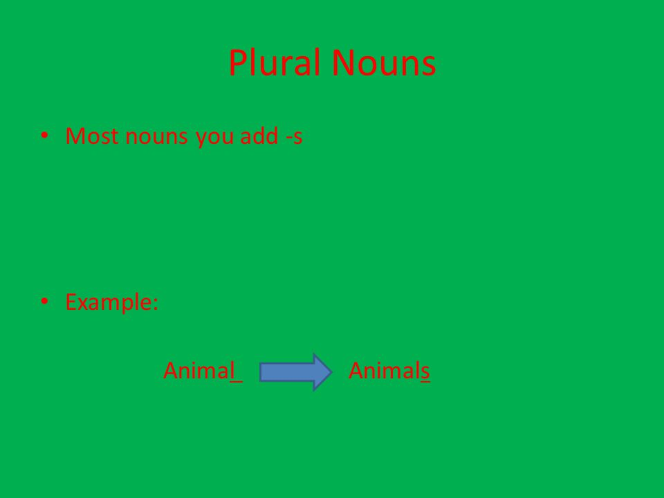 Plural Nouns Most nouns you add -s Example: Animal Animals