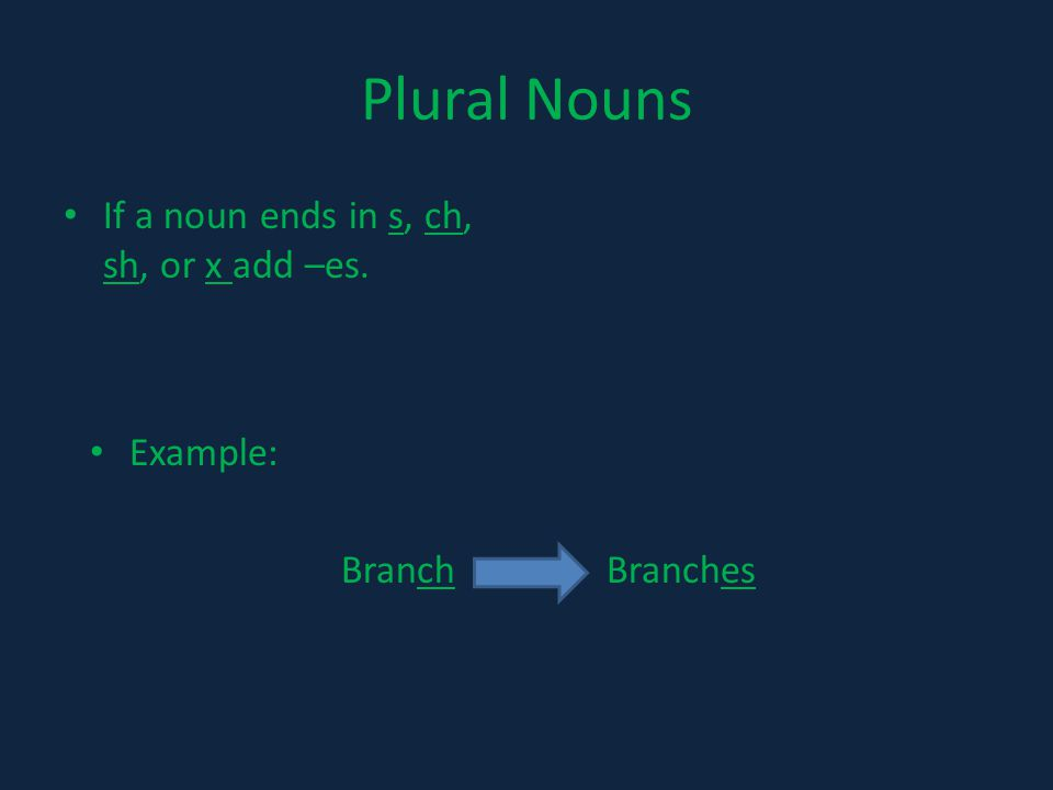 Plural Nouns If a noun ends in s, ch, sh, or x add –es. Example: Branch Branches