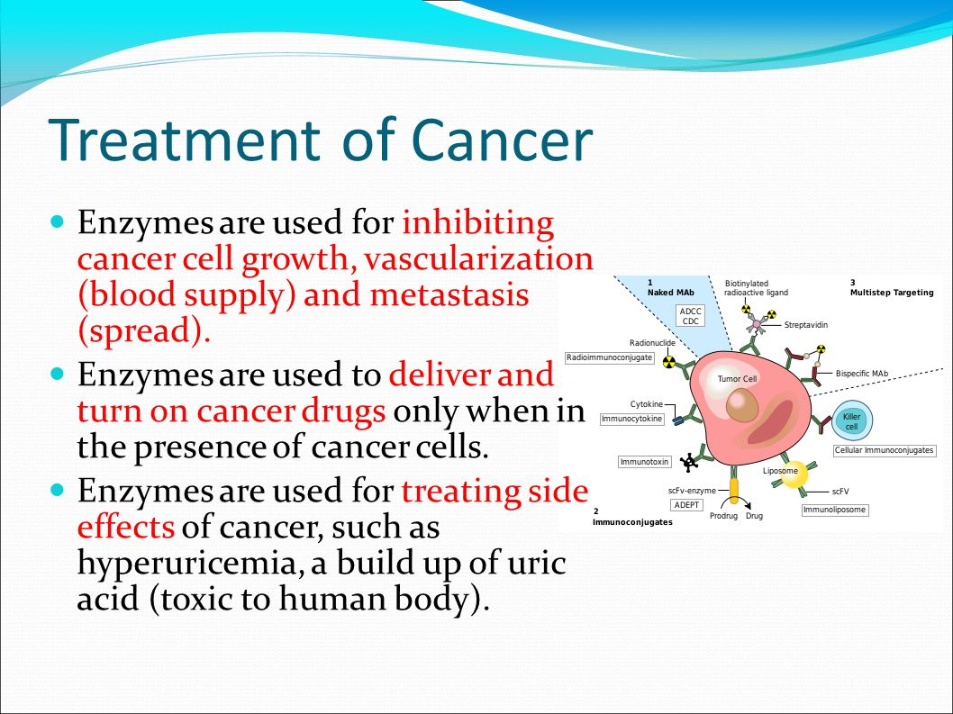 Treatment of Cancer Enzymes are used for inhibiting cancer cell growth, vascularization (blood supply) and metastasis (spread).