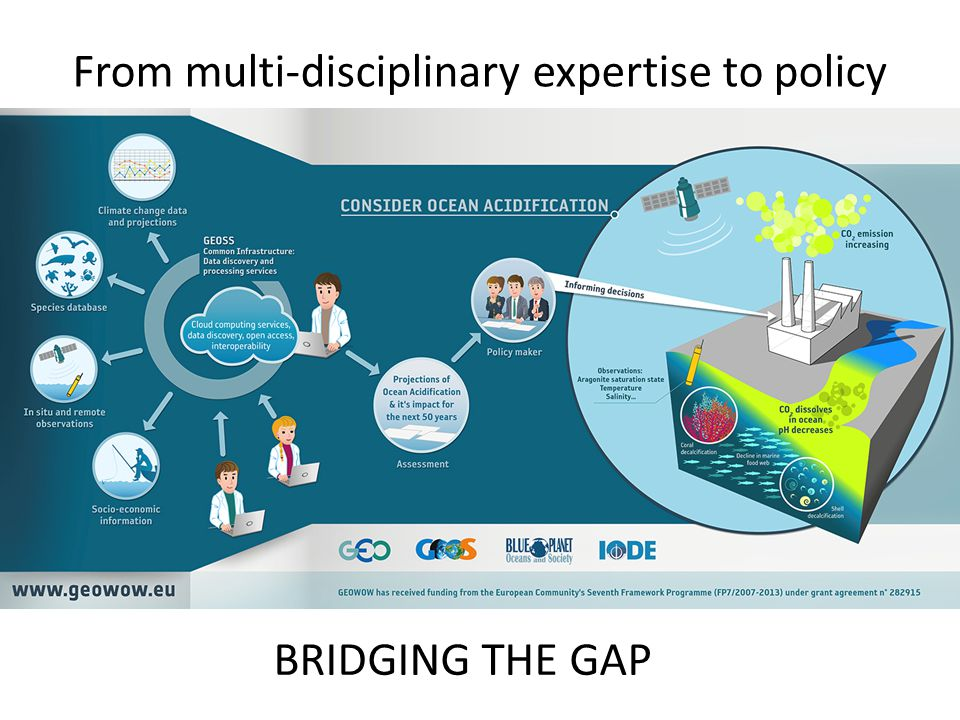 From multi-disciplinary expertise to policy BRIDGING THE GAP