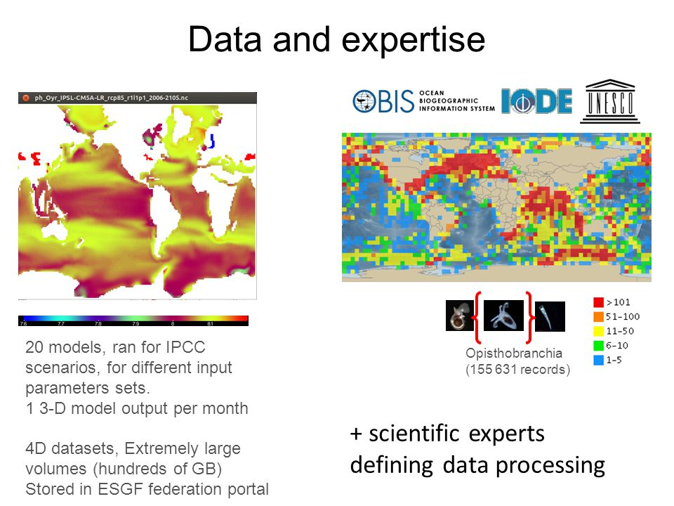 Data and expertise Opisthobranchia ( records) 20 models, ran for IPCC scenarios, for different input parameters sets.