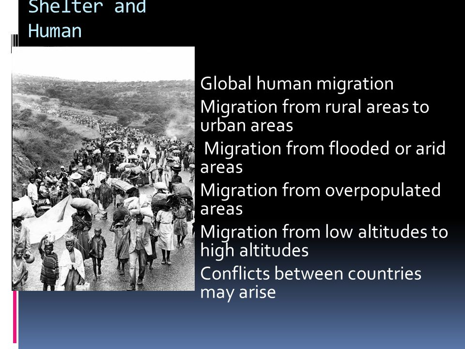 Shelter and Human migration  Global human migration  Migration from rural areas to urban areas  Migration from flooded or arid areas  Migration from overpopulated areas  Migration from low altitudes to high altitudes  Conflicts between countries may arise