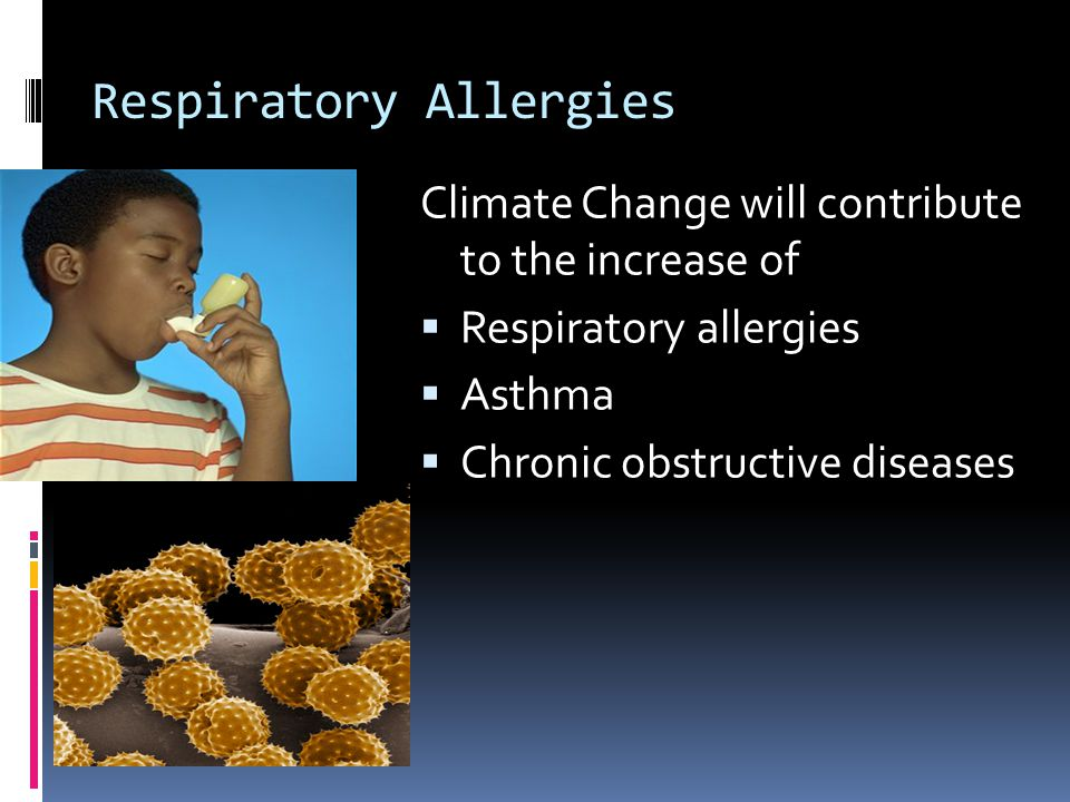 Respiratory Allergies Climate Change will contribute to the increase of  Respiratory allergies  Asthma  Chronic obstructive diseases
