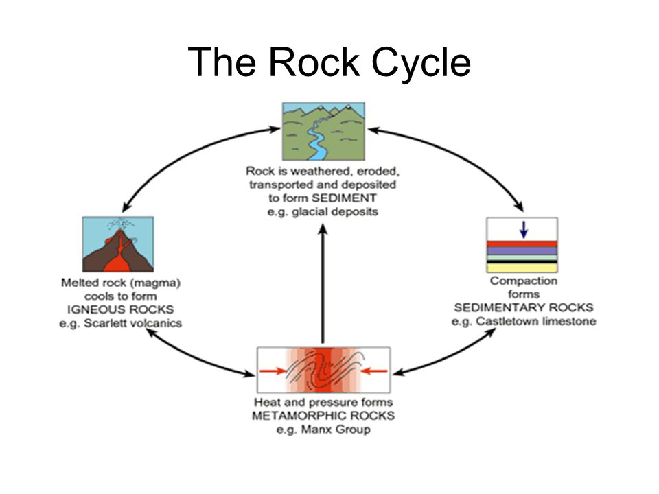 Rock cycle diagram as bread basic guide wiring diagram the rock cycle how can this be a cycle what rock forms when magma rh slideplayer com basic rock cycle diagram the rock cycle diagram fill in blank ccuart Images