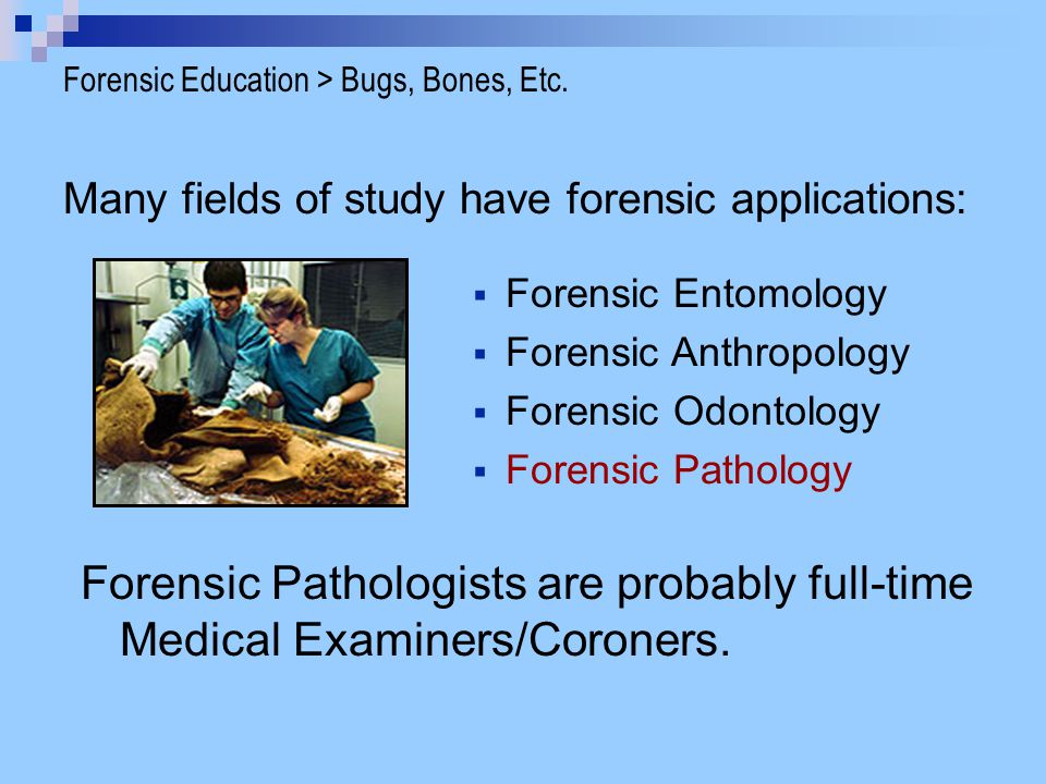 the steps of forensic anthropology essay That's why we have taken the steps to avail anthropology study material in various sub disciplines if you need to write quality essays, samples, research papers, or coursework in anthropology and don't have access to the study material, you have come to the right place.