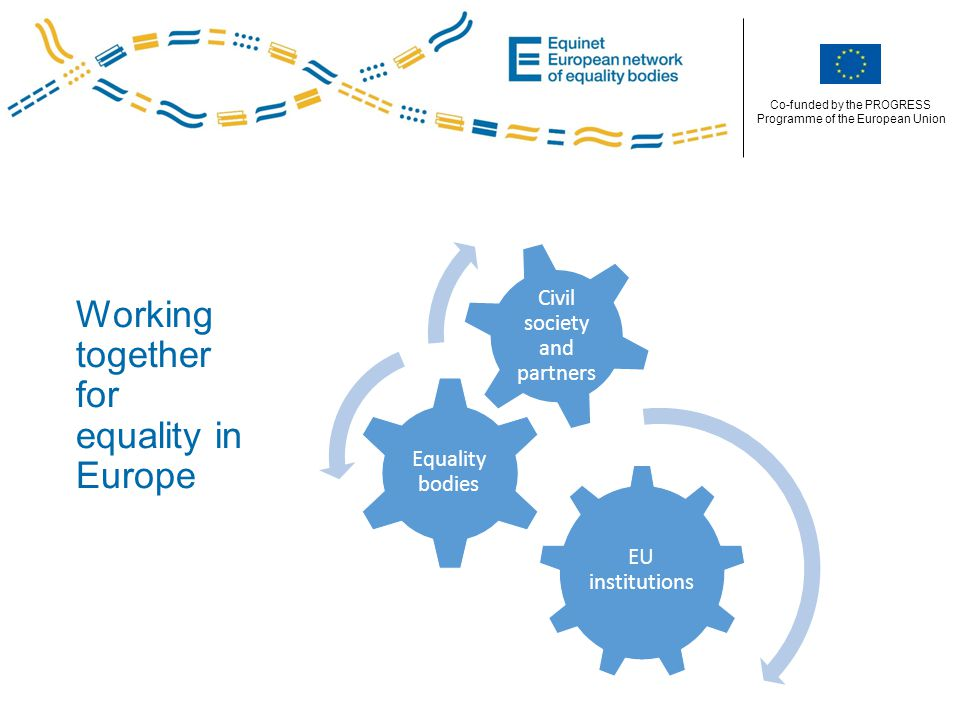 Co-funded by the PROGRESS Programme of the European Union Working together for equality in Europe EU institutions Equality bodies Civil society and partners