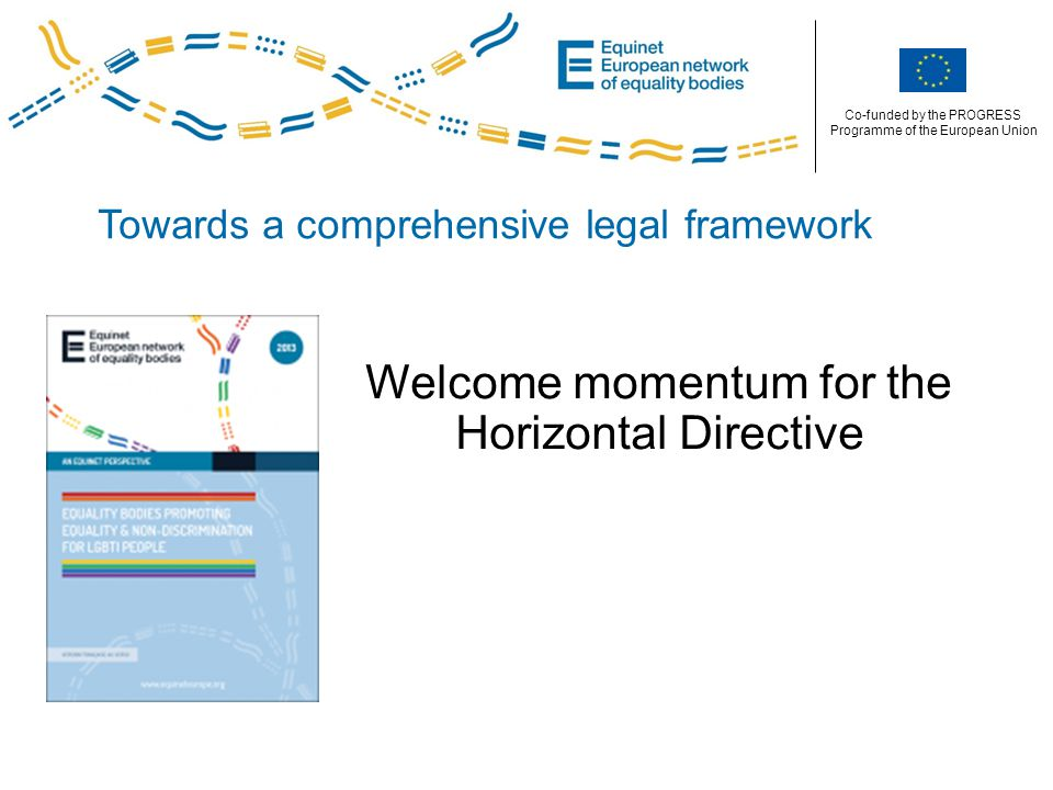 Co-funded by the PROGRESS Programme of the European Union Towards a comprehensive legal framework Welcome momentum for the Horizontal Directive