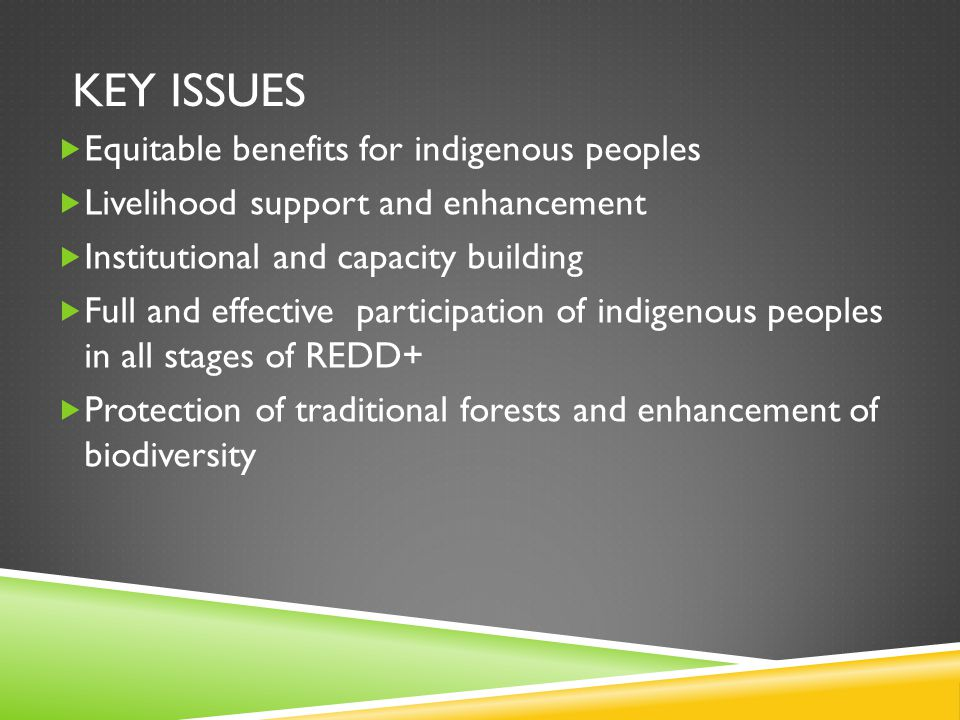 KEY ISSUES  Equitable benefits for indigenous peoples  Livelihood support and enhancement  Institutional and capacity building  Full and effective participation of indigenous peoples in all stages of REDD+  Protection of traditional forests and enhancement of biodiversity