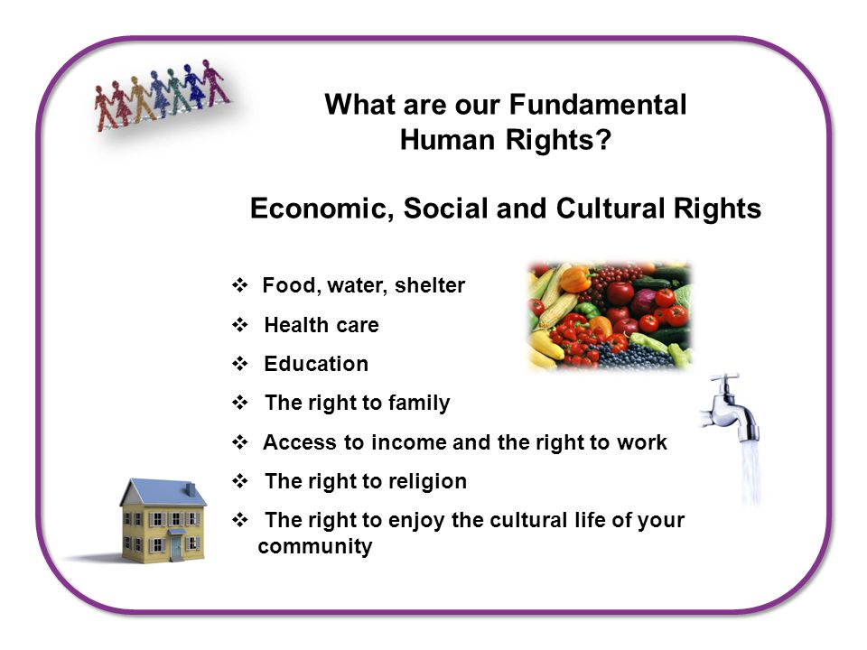 What are our Fundamental Human Rights.