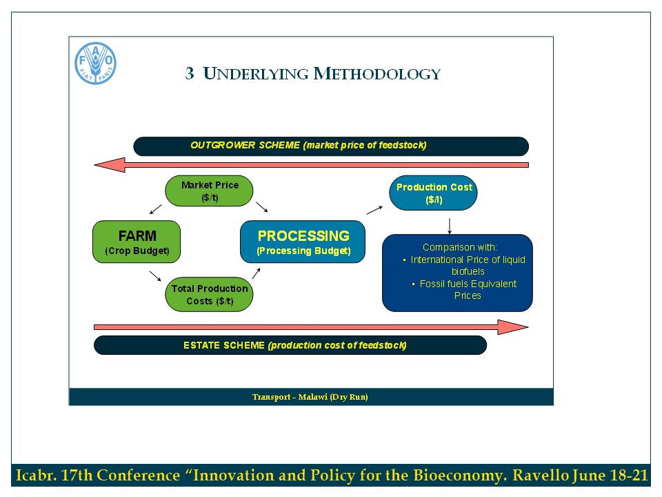 Methodology Icabr. 17th Conference Innovation and Policy for the Bioeconomy. Ravello June 18-21