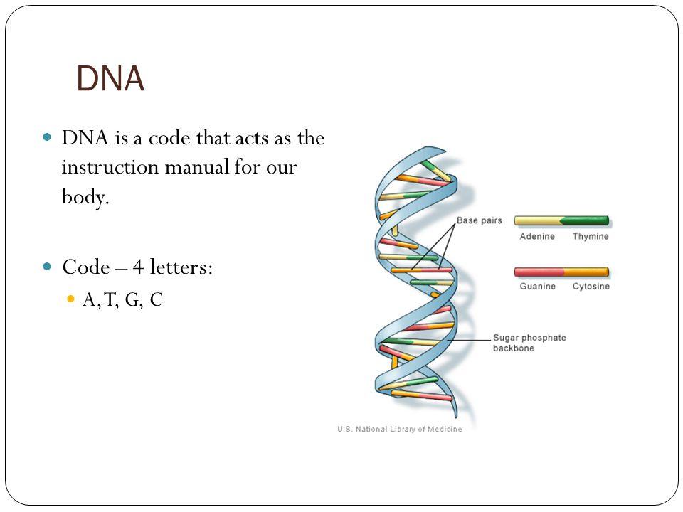 Nugen medical scenar manual illustrated instructions on cd.