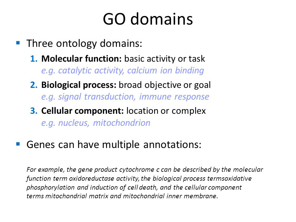  Three ontology domains: 1.Molecular function: basic activity or task e.g.