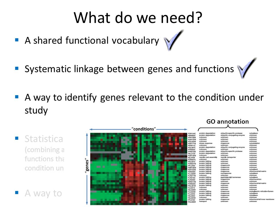  A shared functional vocabulary  Systematic linkage between genes and functions  A way to identify genes relevant to the condition under study  Statistical analysis (combining all of the above to identify cellular functions that contributed to the disease or condition under study)  A way to identify related genes What do we need.
