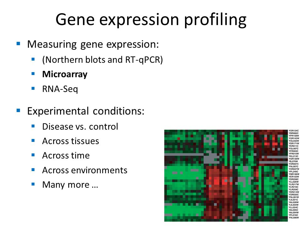  Measuring gene expression:  (Northern blots and RT-qPCR)  Microarray  RNA-Seq  Experimental conditions:  Disease vs.