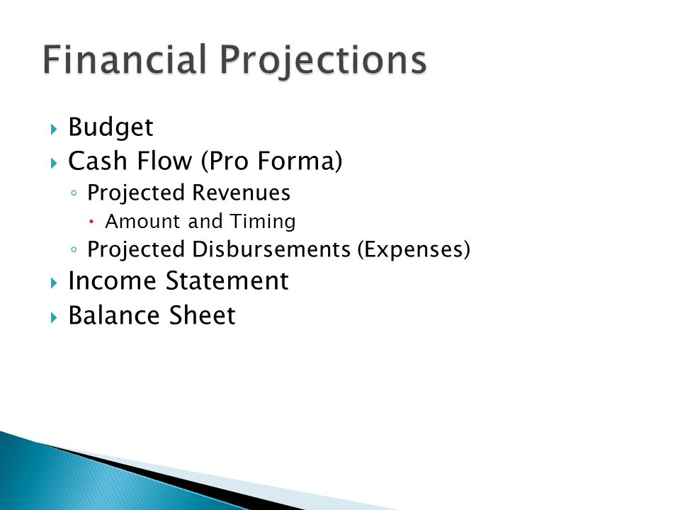  Budget  Cash Flow (Pro Forma) ◦ Projected Revenues  Amount and Timing ◦ Projected Disbursements (Expenses)  Income Statement  Balance Sheet