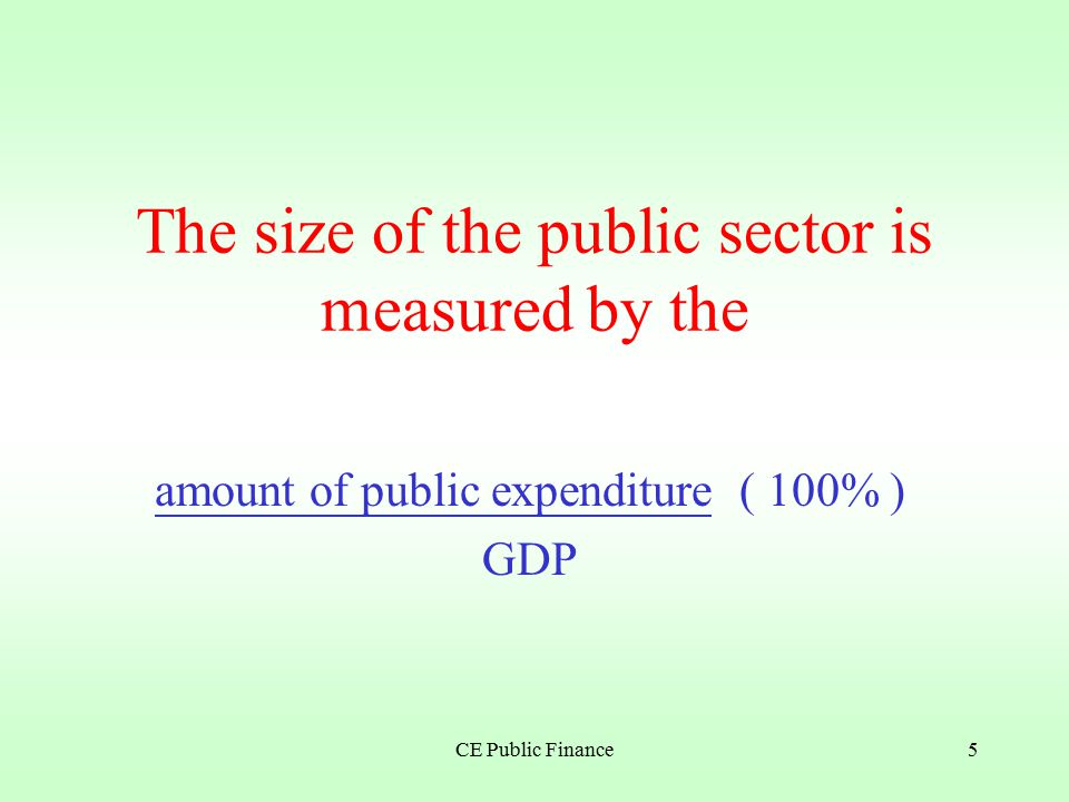 CE Public Finance4 The government is referred to as the public sector