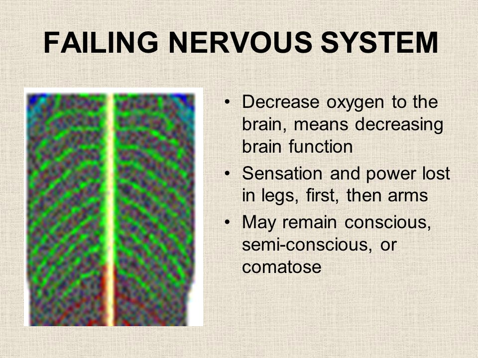 FAILING NERVOUS SYSTEM Decrease oxygen to the brain, means decreasing brain function Sensation and power lost in legs, first, then arms May remain conscious, semi-conscious, or comatose