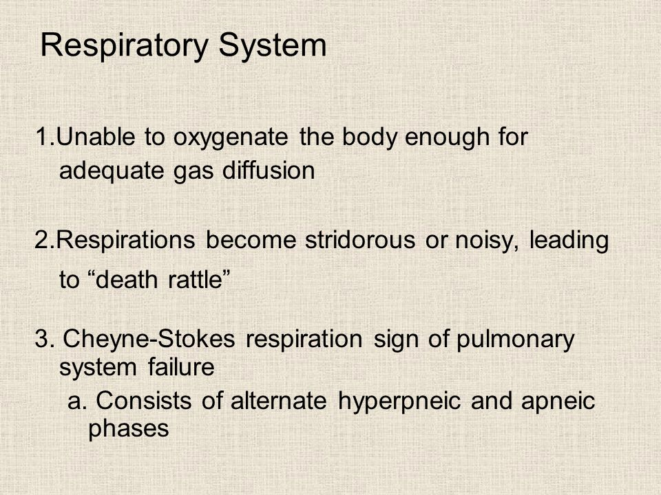 1.Unable to oxygenate the body enough for adequate gas diffusion 2.Respirations become stridorous or noisy, leading to death rattle 3.