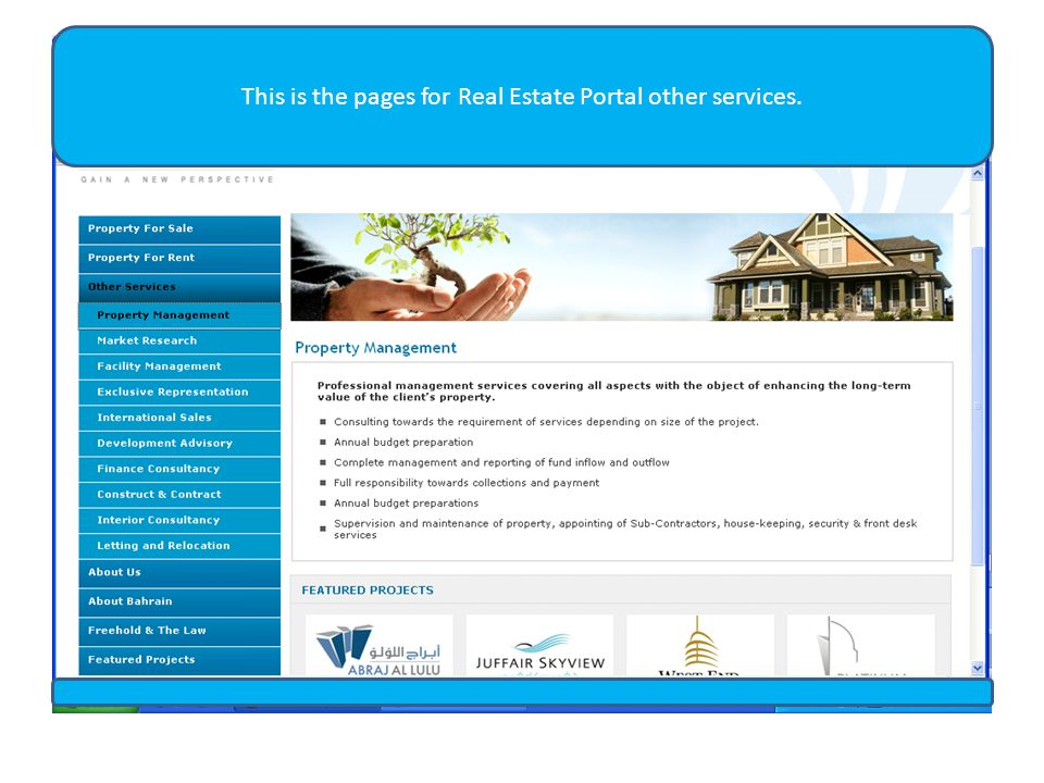 This is the pages for Real Estate Portal other services.