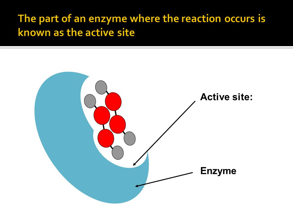 Active site: Enzyme
