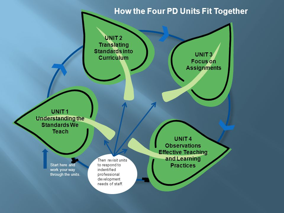 How the Four PD Units Fit Together UNIT 2 Translating Standards into Curriculum UNIT 3 Focus on Assignments UNIT 4 Observations Effective Teaching and Learning Practices UNIT 1 Understanding the Standards We Teach Then revisit units to respond to indentified professional development needs of staff.