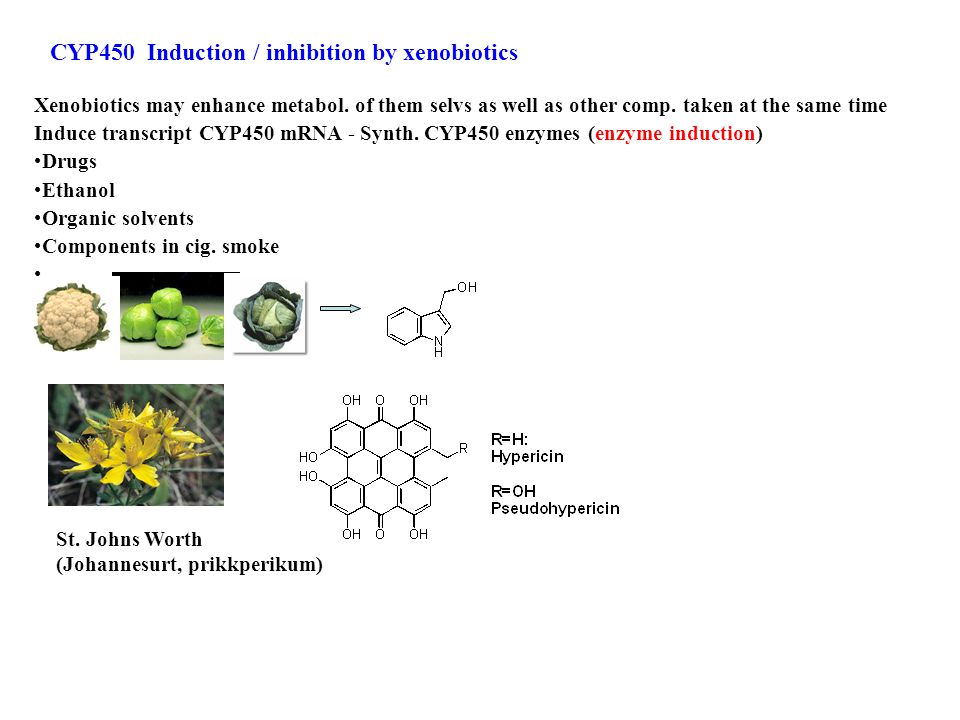 CYP450 Induction / inhibition by xenobiotics Xenobiotics may enhance metabol.