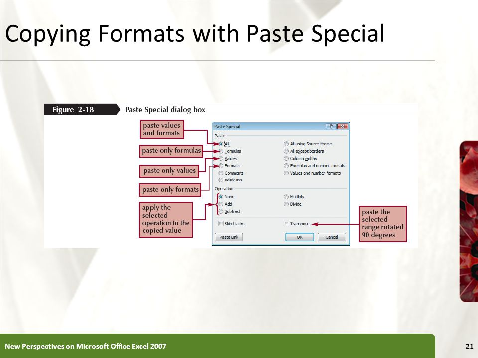 XP Copying Formats with Paste Special New Perspectives on Microsoft Office Excel