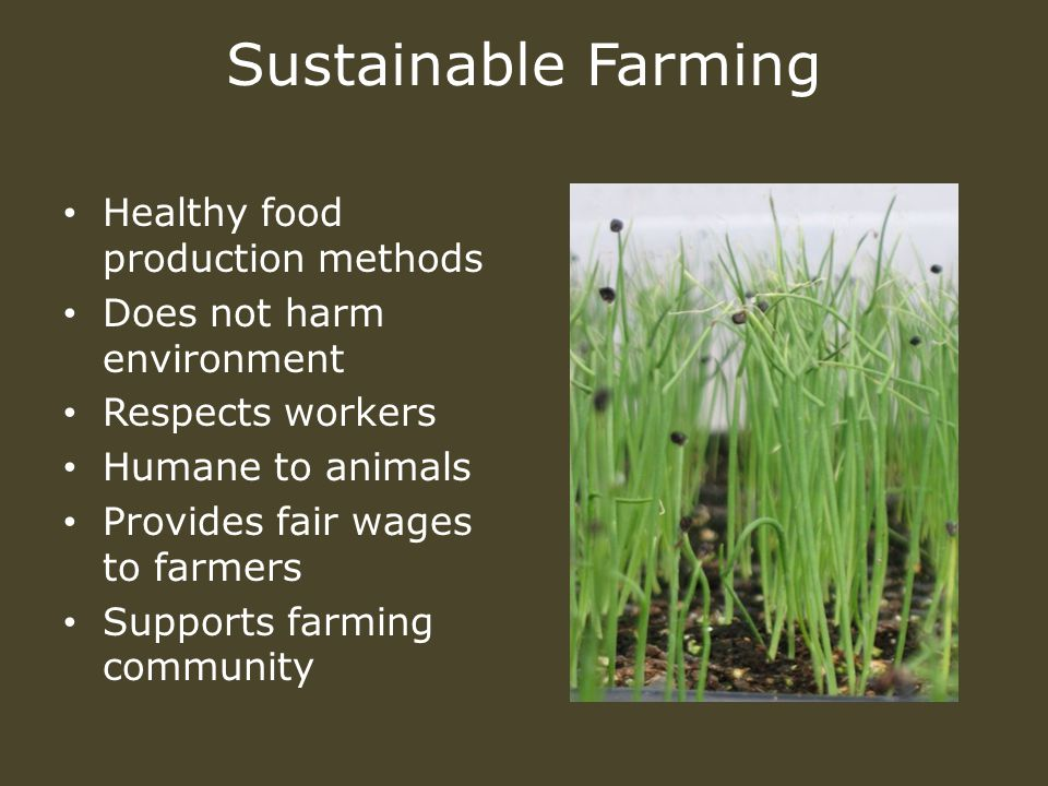 Sustainable Farming Healthy food production methods Does not harm environment Respects workers Humane to animals Provides fair wages to farmers Supports farming community