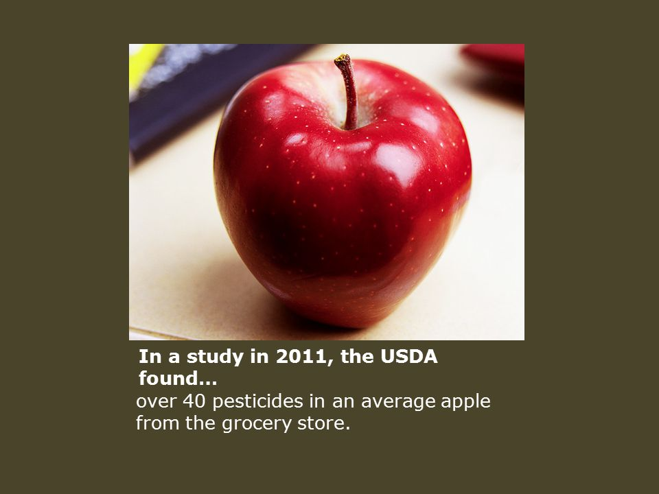 In a study in 2011, the USDA found… over 40 pesticides in an average apple from the grocery store.