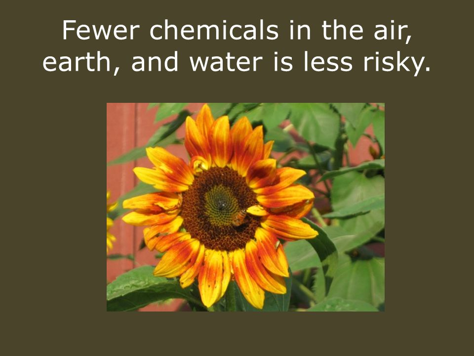 Fewer chemicals in the air, earth, and water is less risky.